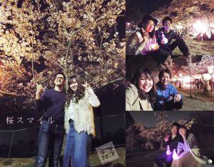 日岡山公園の夜桜