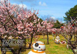 日岡山公園の梅林